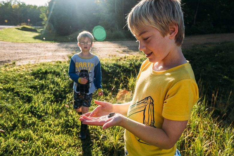 Boy holds a frog and his brother watches from a distance
