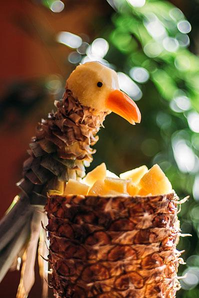Pineapple parrot